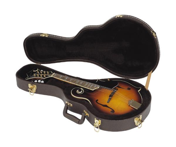 Hohner HFMC Guitar Cases