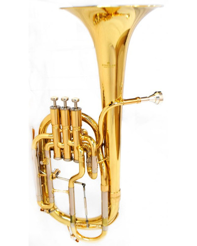 Schiller Edinburg Elite Alto Horn