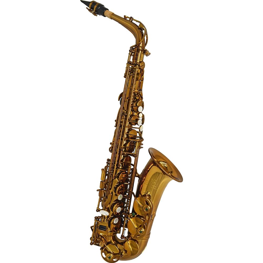 Schiller Elite V Alto Saxophone – Decade Aged Vintage Gold Finish