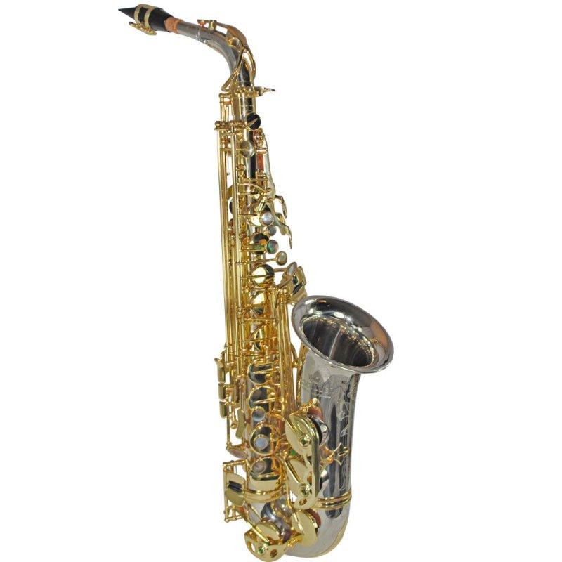 Schiller Elite V Alto Saxophone – Silver & Gold