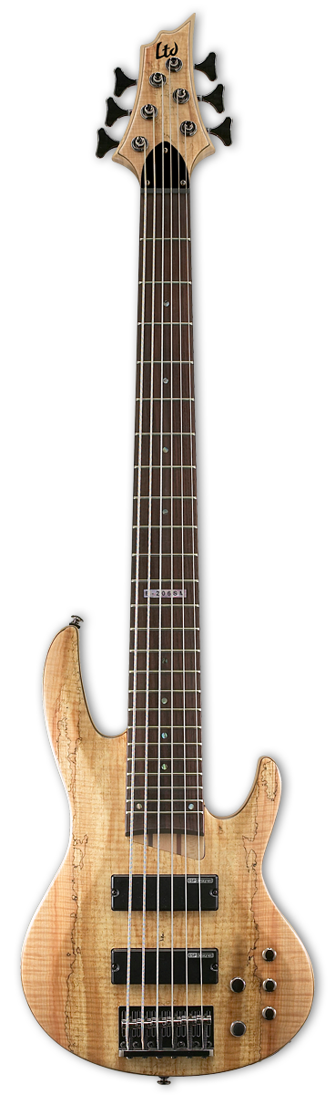 ESP LTD B-206SM Natural Satin Bass Guitar